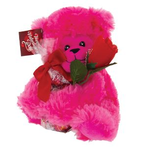 Beary Cute Valentine's Day Gift Set